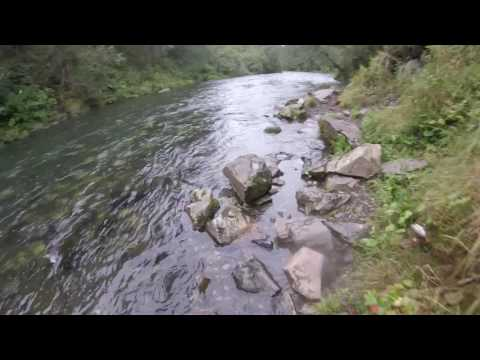 Russian River Fishing Alaska 2016