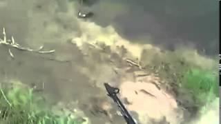 неизвестное существо на рыбалке