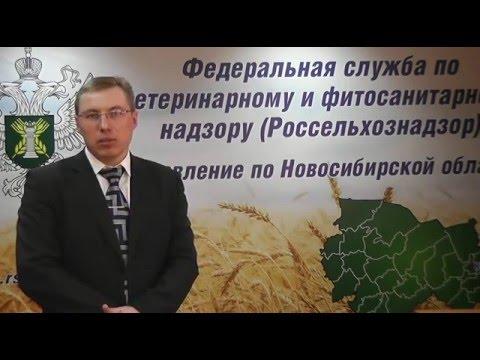 """О визите представителей Управления в ОАО """"Новосибирская птицефабрика"""""""