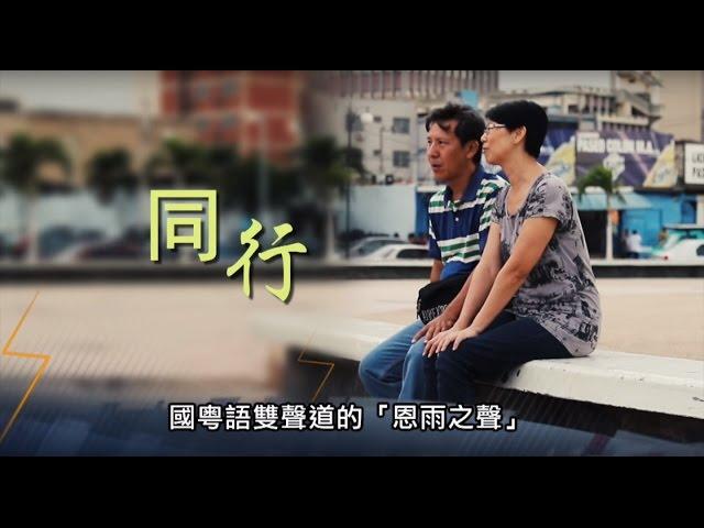 電視節目TV 1365 同行 (HD粵語) (委內瑞拉系列)