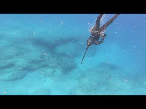 Oahu Spearfishing Shinanigans
