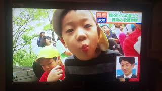 2018年6月20日 NHK首都圏ネットワーク.