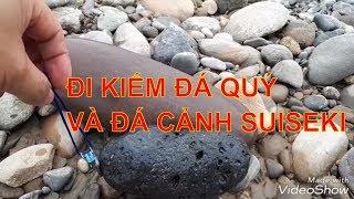 Đi kiếm đá quý và đá cảnh suiseki - Đá thả bể cá cảnh - 0918979468 Go find gems - Strange gems