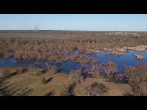 Morley Ranch | Kaufman County TX | BRRS