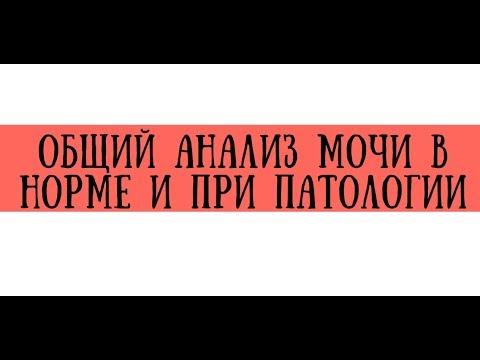 Общий анализ мочи - узнать цены на анализ и сдать в Москве