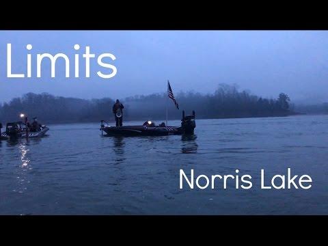 BFL Tournament No.1 Norris Lake Recap   Limits S1E3