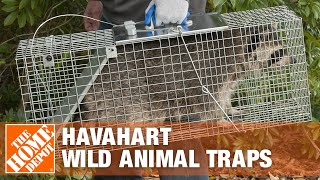 Havahart Wild Animal Traps - The Home Depot