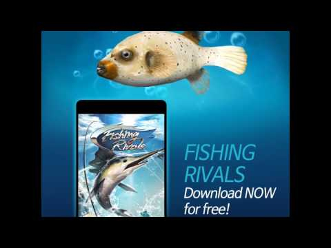 Fishing Rivals : Hook & Catch
