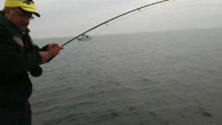 Valera Schmidt fly fishing for Blues Shoo Fly November 2009
