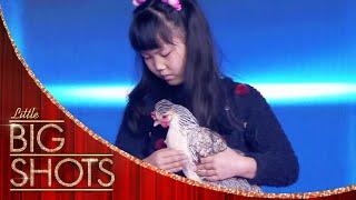 "Jiaying ""Hypnotises"" Animals to Sleep | Little Big Shots"