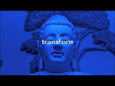 Buddhist Meditation for Beginners 20 Minutes