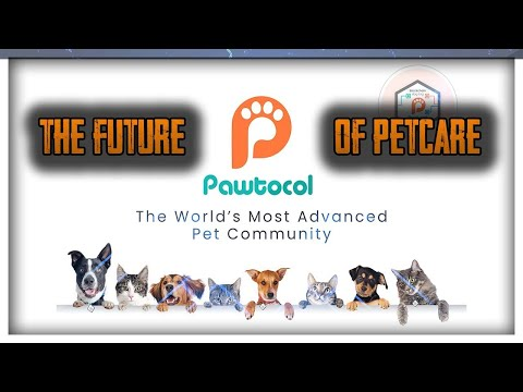 World's Most Advanced Pet Community | Pawtocol Review