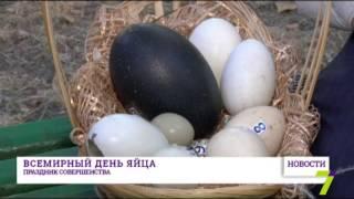 Всемирный день яйца - праздник совершенства