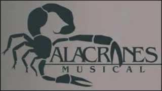 ALACRANES MUSICAL ZAPATEADOS ENCABRONADOS MIX DJ JUNIOR