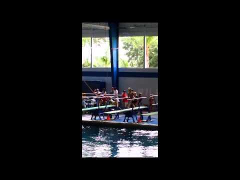Max Fowler USA Diving Nationals 2015 11U Boys 1M
