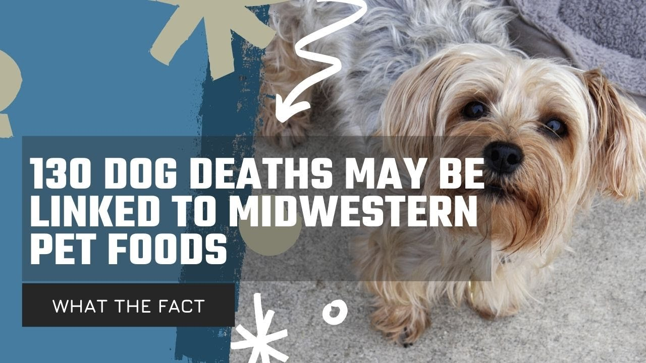More than 130 dog deaths may be linked to Midwestern Pet Foods ...