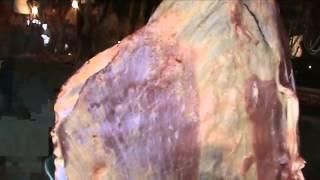 市場で売られてる肉が・・ピクっピクっ!![閲覧注意] thumbnail