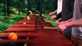 Legend of Zelda - Dark World Theme on Marimba