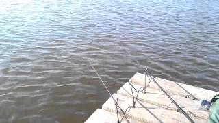 Рыбалка хут.Безлесный,Краснодарский край(Фидер метод., 2013-02-14T06:52:46.000Z)