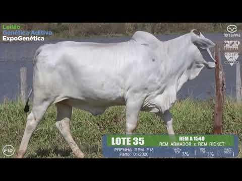 LOTE 35 - Leilão Genética Aditiva ExpoGenética 2019