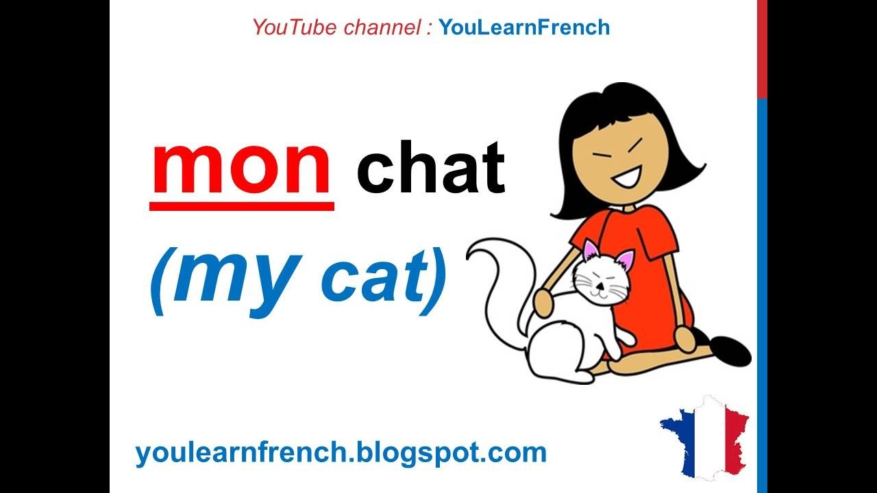 French Grammar Lessons - YouTube