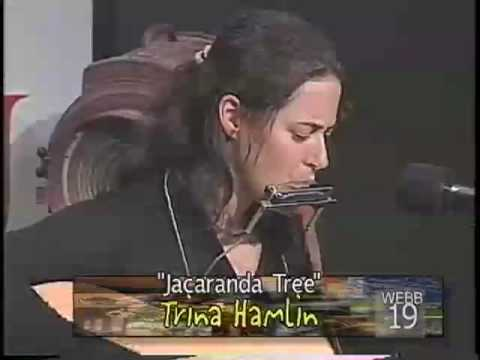 Trina Hamlin - Jacaranda Tree - Words and Music