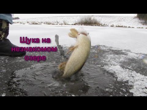 Ловля щуки зимой на жерлицу відео рибалка зима 2015  Pike Fishing Winte