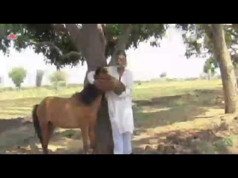 Khandesh comedy movie scene