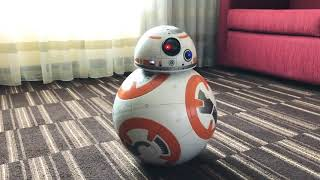REVIEW: BB8 Hero Droid from SpinMaster  Star Wars musthave!