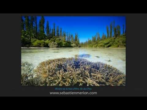 Photos de Nouvelle-Calédonie - New Caledonia Pictures