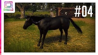 Windstorm - Horse Adventures (part 4) (Horse Game)