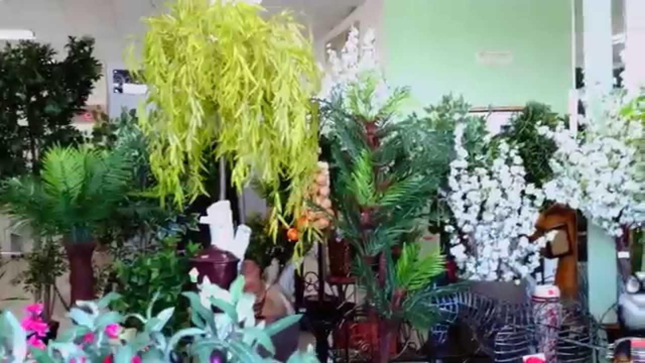 Искусственные деревья Минск Декоративные купить для интерьера .