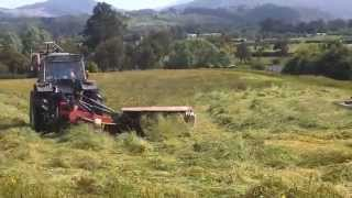 BT hay making while the sun shines ......