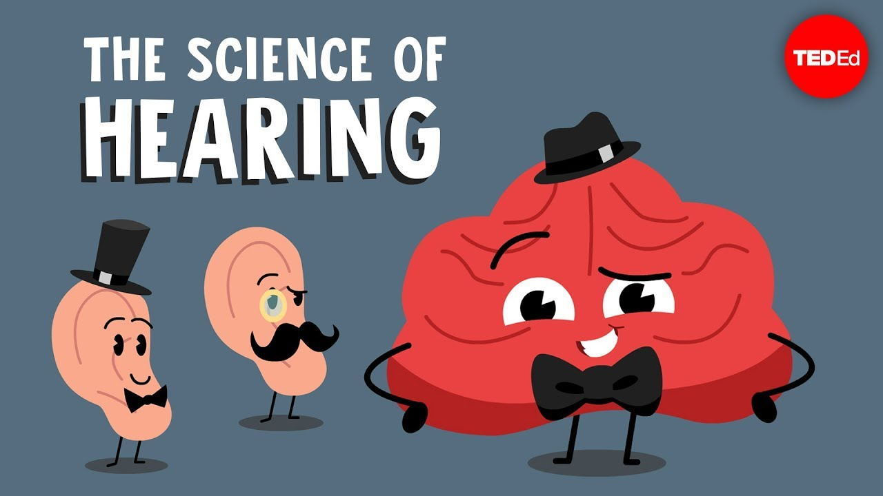 Download The science of hearing - Douglas L. Oliver