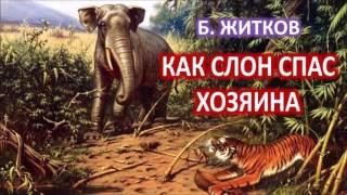 Борис Житков - Рассказы о животных - Как слон спас хозяина от тигра