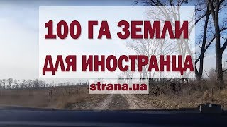 """Как иностранцы покупают землю в Украине. Эксперимент """"Страны""""   Страна.ua"""