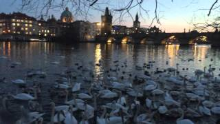 Backpacking Europe – A Travel Documentary