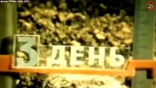 Грибы, Научно-Популярный фильм СССР 1973 год