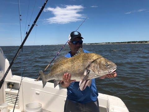 Big Black Drum Fishing Delaware Bay May 2019.