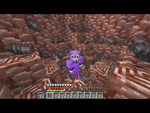 This Minecraft Video Will Satisfy You [Nether Update Edition]