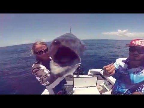 fishing offshore gold coast new era angler vxkong_fishing