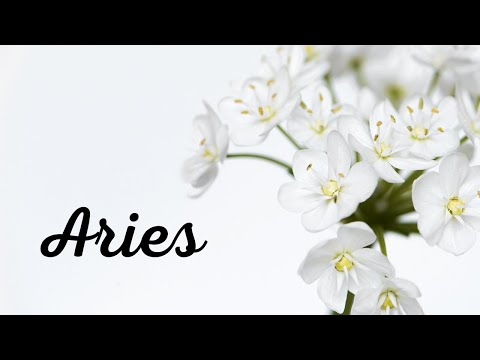Aries💘~ Someone Has Some Major Explaining To Do!! (Very Specific Reading!!)