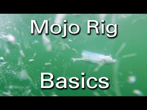Trolling Mojo's For Striped Bass (How To)