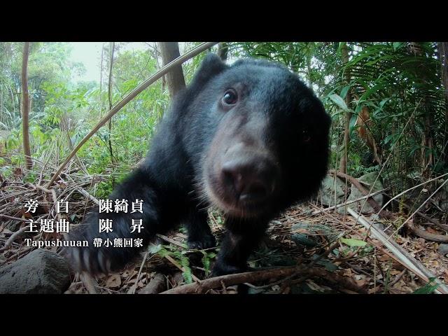 《黑熊來了》10秒短版電影預告|12/13 尋找山的靈魂