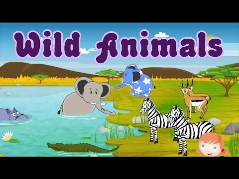 Thumbnail: Learn About Wild Animals, Animal Sounds, Fun and Educational Videos for Kids