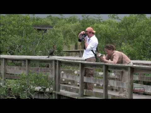 Everglades National Park 3-minute Tour