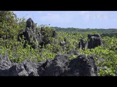 Makatea Island Phosphate Mining