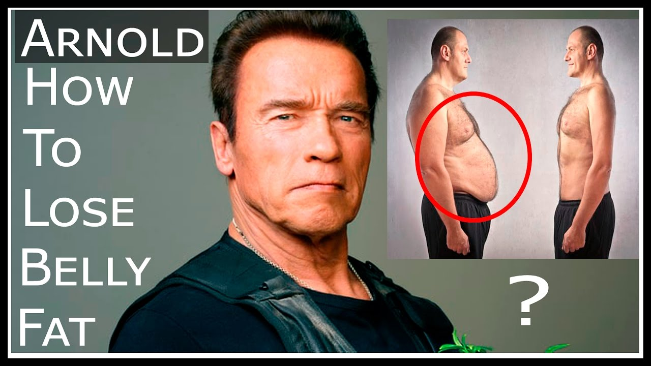 Fastest way to lose belly fat by arnold interview topnewsage fastest way to lose belly fat by arnold interview topnewsage malvernweather Gallery
