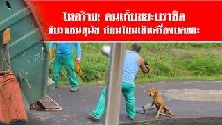 Repeat youtube video โหดร้าย! คนเก็บขยะบราซิล ขับรถชนสุนัข  ก่อนโยนเข้าเครื่องบดขยะ #สดใหม่ไทยแลนด์ ช่อง2