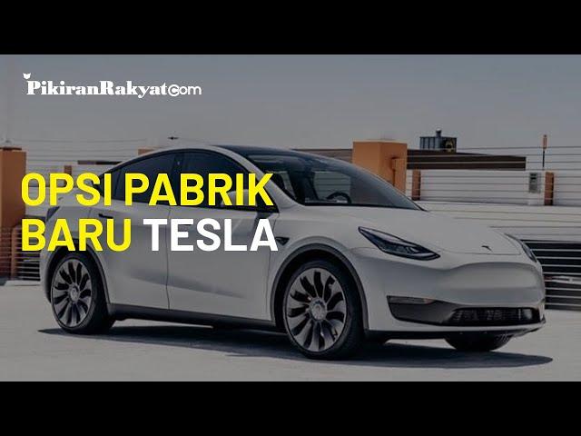 Soal Pembangunan Pabrik Tesla, Indonesia Kini Bersaing dengan Thailand